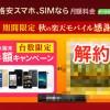 【人柱レポ】楽天モバイル、音声SIMの回線を解約する方法