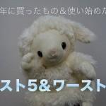 【2015年まとめ】今年買った&使い始めたモノ ベスト5&ワースト5を発表!!