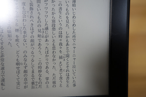 DSC09717.JPG