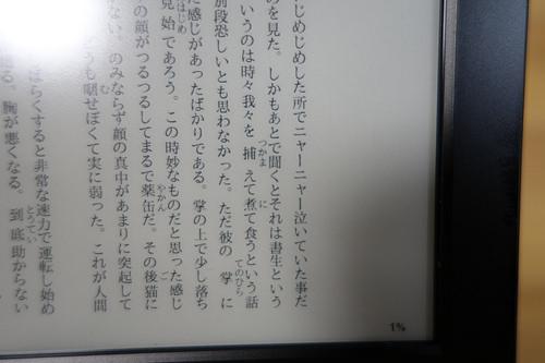 DSC09719.JPG