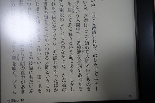 DSC09721.JPG