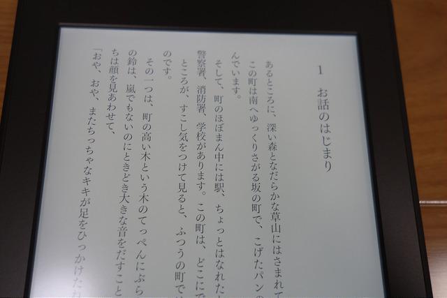 DSC07889.JPG
