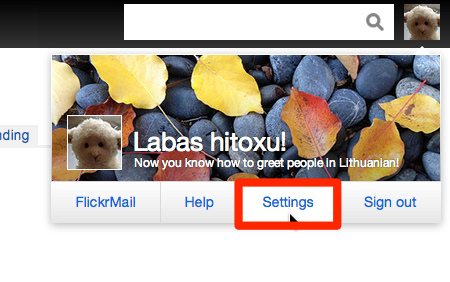 Flickr: Your Account