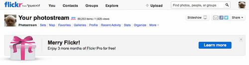6.95ドルが無料!今だけFlickr Proアカウントが3ヶ月プレゼント中!(FreeアカウントもOK!)